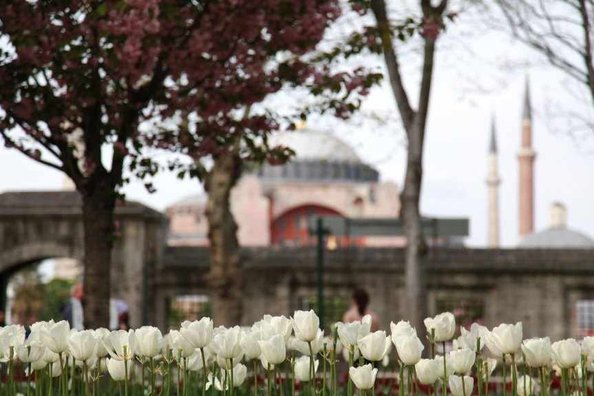 6 things not to miss in Istanbul